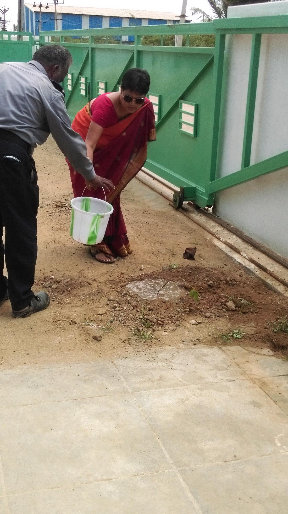 tree-plantation-5